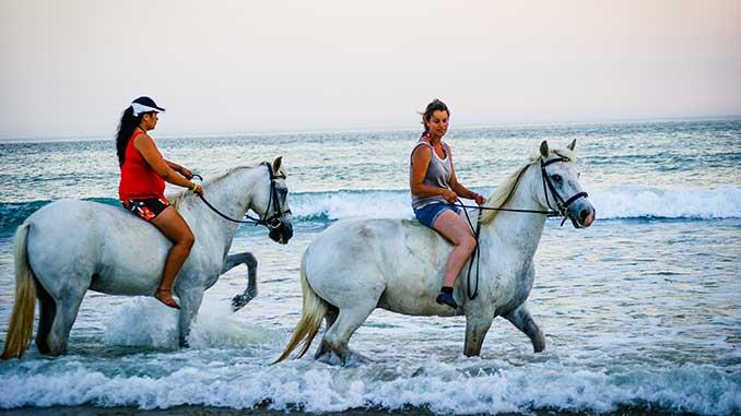 balade à cheval la flotte en ré