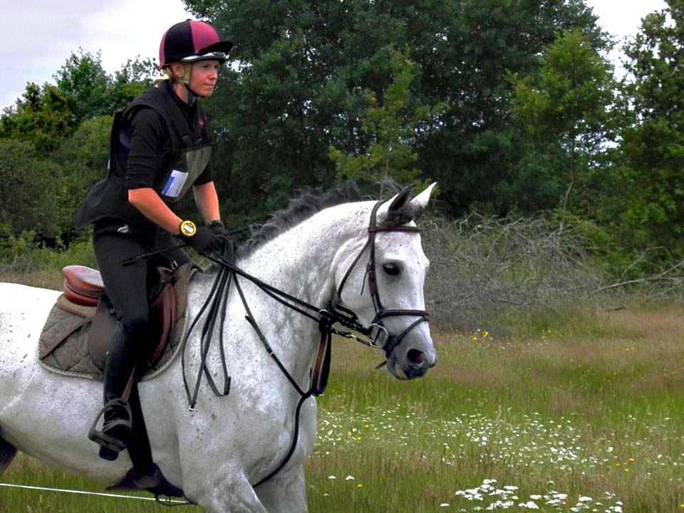 cours d'équitation ile de ré