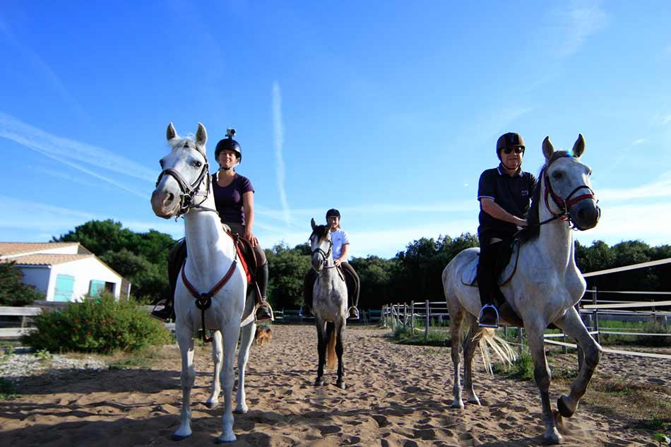 balade à cheval sur l'ile de re
