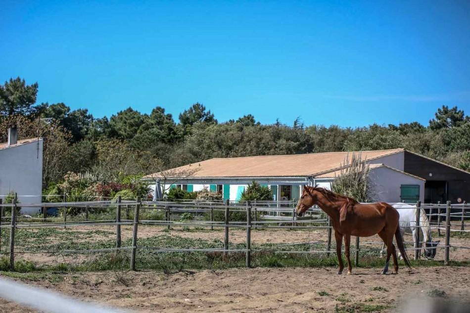 Domaine d'équitation à lîle de Ré