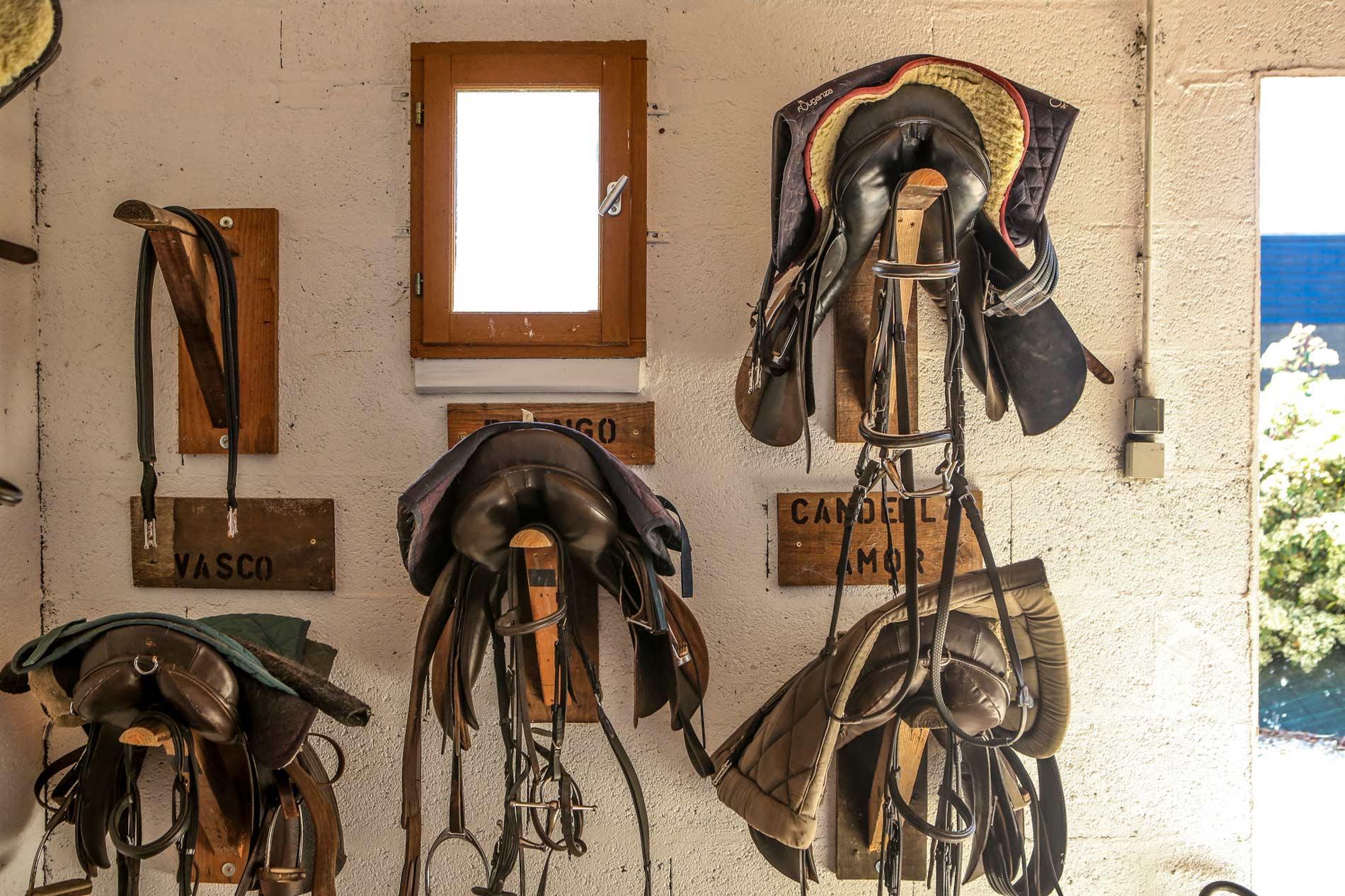 Matériel équitation équipassion ile de ré