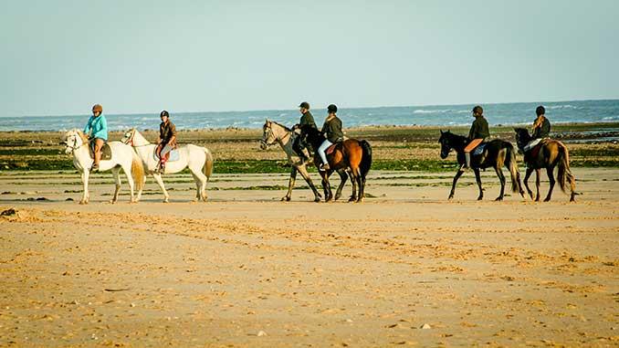 balade en poney sur l'ile de ré